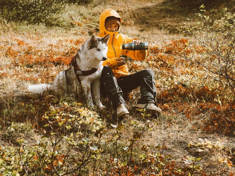 Bí quyết leo núi dã ngoại cùng thú cưng