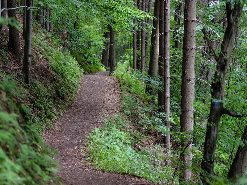 kinh nghiệm trekking