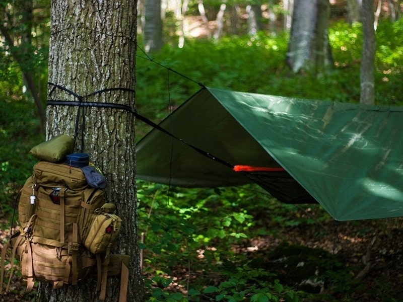 8 kỹ năng sinh tồn trong rừng đơn giản bắt buộc phải biết