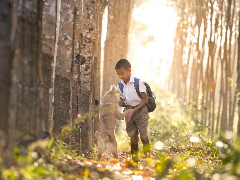 leo núi cho trẻ
